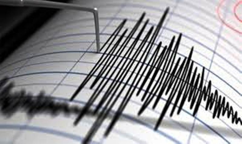 زمین لرزه 6.1 ریشتری شمال شرق هند را لرزاند